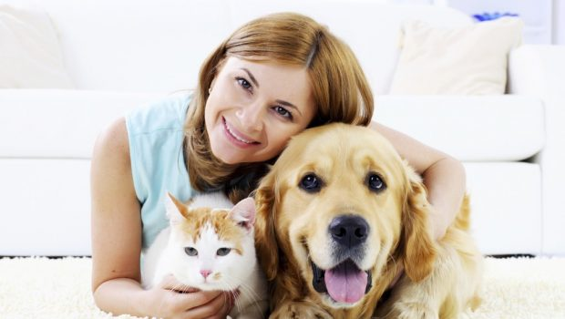 Most effective Tactics For Pet Hygiene At Home