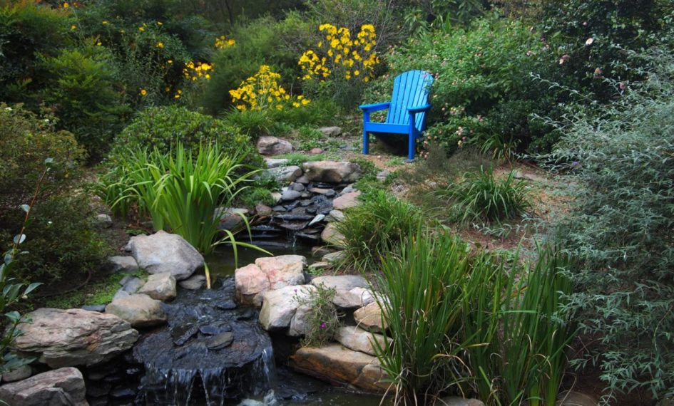 Tips To Install A Water Feature In Your Backyard